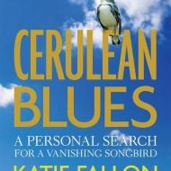 CB cover